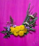 Από τα λουλούδια και τη χλόη πικραλίδων άνοιξη στο ξύλινο υπόβαθρο Στοκ Φωτογραφία