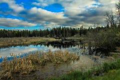 Από την άκρη του δρόμου, οδηγώντας εθνικό πάρκο βουνών, Manitoba, Καναδάς στοκ εικόνες
