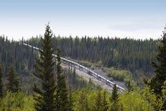 από την Αλάσκα σωλήνωση Στοκ Εικόνες