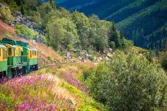 Από την Αλάσκα εξόρμηση τραίνων Στοκ Εικόνες
