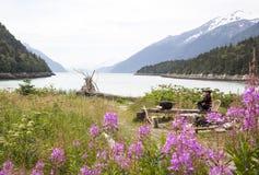 Από την Αλάσκα χρώματα Στοκ Εικόνα