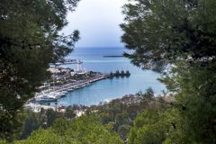 από την ισπανική πόλη της Μάλαγας Λιμένας, κόλπος, σκάφη Ένα βλέμμα στο λιμάνι μέσω του κωνοφόρου στοκ εικόνες