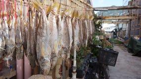 Από την Καντώνα παστά ψάρια που είναι αποξηραμένα Tai Ο, Χονγκ Κονγκ Στοκ Εικόνες