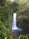 Από την Κόστα Ρίκα ομορφιά Στοκ Εικόνες