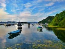 Από τη λίμνη Στοκ Εικόνα