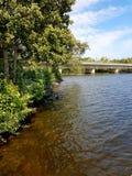 Από τη λίμνη στοκ φωτογραφίες με δικαίωμα ελεύθερης χρήσης