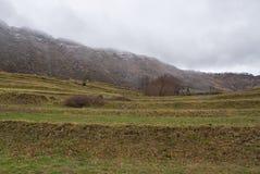 Από τη Λιγουρία Apennines - Monte Ramaceto - Cichero - SAN Colombano Certenoli - Λιγυρία - Ιταλία Στοκ Φωτογραφίες