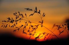 Από το ηλιοβασίλεμα Στοκ Εικόνες