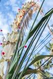 Από το Μπαλί θρησκευτικές προσφορές που γίνονται κατά τη διάρκεια της παραδοσιακής τελετής Τροπικό νησί Μπαλί, Ινδονησία Στοκ Φωτογραφίες