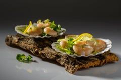 απλές ντομάτες γαρίδων σαλάτας γαρίδων πρασίνων υγιείς μικτές Στοκ φωτογραφία με δικαίωμα ελεύθερης χρήσης