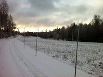 Απλές χιονώδεις διαδρομές ελαστικών αυτοκινήτου - πορτρέτο Στοκ Εικόνες