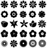 Απλό γεωμετρικό λουλούδι μορφής όπως η ροδαλή μαργαρίτα ηλίανθων τουλιπών Στοκ Εικόνες