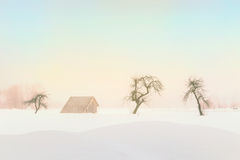 Απλό, ελάχιστο χειμερινό τοπίο στη Σλοβενία Στοκ εικόνες με δικαίωμα ελεύθερης χρήσης