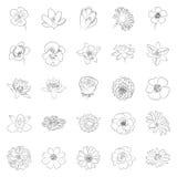 Απλό μαύρο σύνολο εικονιδίων λουλουδιών περιλήψεων Στοκ Φωτογραφίες