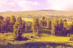 Απλό τοπίο βουνών Στοκ Εικόνες