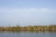 Απλό τοπίο στο δέλτα Neajlov Στοκ φωτογραφίες με δικαίωμα ελεύθερης χρήσης
