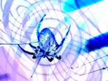 αράχνη απεικόνισης Στοκ φωτογραφίες με δικαίωμα ελεύθερης χρήσης