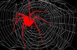 Αράχνη και Ιστός αραχνών Στοκ εικόνα με δικαίωμα ελεύθερης χρήσης