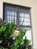 Αράχνη που αναστέλλεται στον αέρα Στοκ φωτογραφίες με δικαίωμα ελεύθερης χρήσης