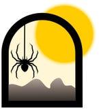 Αράχνη στην ηλιόλουστη ημέρα Στοκ φωτογραφία με δικαίωμα ελεύθερης χρήσης