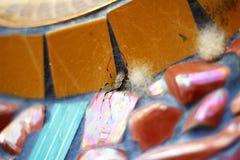 Αράχνη στο βερνικωμένο κεραμίδι Στοκ εικόνα με δικαίωμα ελεύθερης χρήσης