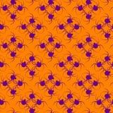 Αράχνη σχεδίων αποκριών Στοκ εικόνες με δικαίωμα ελεύθερης χρήσης