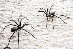 Αράχνη δύο μετάλλων Στοκ εικόνα με δικαίωμα ελεύθερης χρήσης