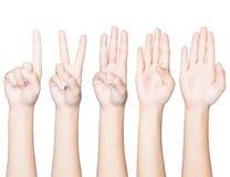 Αρίθμηση χειρονομίας χεριών κινηματογραφήσεων σε πρώτο πλάνο ένα έως πέντε απομονωμένο ψαλίδισμα π Στοκ Εικόνα