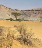 αραβική έρημος Στοκ φωτογραφία με δικαίωμα ελεύθερης χρήσης