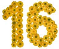 Αραβικός αριθμός 16, δέκα έξι, από τα κίτρινα λουλούδια της νεραγκούλας, ι Στοκ Εικόνα