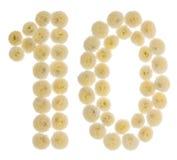 Αραβικός αριθμός 10, δέκα, από τα λουλούδια κρέμας του χρυσάνθεμου, ISO Στοκ Εικόνες