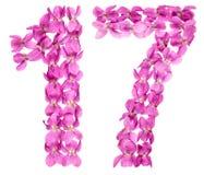 Αραβικός αριθμός 17, δεκαεπτά, από τα λουλούδια του viola, που απομονώνονται επάνω Στοκ φωτογραφία με δικαίωμα ελεύθερης χρήσης