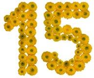 Αραβικός αριθμός 15, δεκαπέντε, από τα κίτρινα λουλούδια της νεραγκούλας, ι Στοκ Φωτογραφία