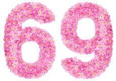 Αραβικός αριθμός 69, εξήντα εννέα, από τα ρόδινα forget-me-not λουλούδια, ελεύθερη απεικόνιση δικαιώματος