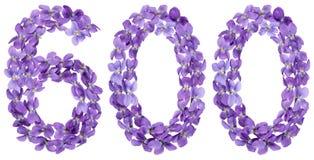 Αραβικός αριθμός 600, εξακόσιοι, από τα λουλούδια του viola, που απομονώνονται Στοκ Εικόνες