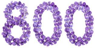 Αραβικός αριθμός 800, οκτακόσιοι, από τα λουλούδια του viola, isolat Στοκ Εικόνες
