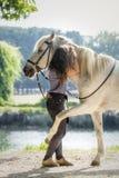 Αραβικό άλογο που αγκαλιάζει τον ιδιοκτήτη του Irene Gefaell που παρουσιάζει φυσική εκπαίδευση αλόγου σε περιστροφές στο πάρκο Po στοκ φωτογραφία