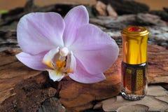 Αραβικό πετρέλαιο μασάζ Πέτρες και λουλούδι ορχιδεών με το φυσικό πετρέλαιο στο σαλόνι SPA Στοκ Εικόνες