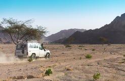 αραβικό σαφάρι εμιράτων ερήμων που ενώνεται Στοκ Εικόνες