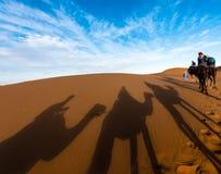 Αργά το απόγευμα σκιές των καμηλών και του τροχόσπιτου Dromedary που οδηγούνται από Tuareg το άτομο σε Merzouga, Erg Chebbi, Μαρό στοκ φωτογραφία