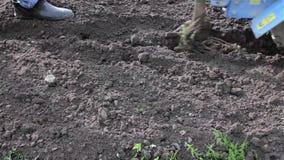 Αργά τραβά πίσω, υποχωρώντας με τον καλλιεργητή απόθεμα βίντεο