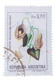 ΑΡΓΕΝΤΙΝΗ - CIRCA 1983: ένα γραμματόσημο που τυπώνεται στις επιδείξεις Γ Στοκ Φωτογραφία