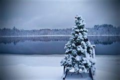 Αργυροειδές ψυχρό stillness στοκ εικόνα με δικαίωμα ελεύθερης χρήσης
