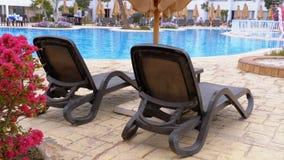 Αργόσχολος Sunbed κοντά στην πισίνα με το μπλε νερό στο θέρετρο της Αιγύπτου απόθεμα βίντεο
