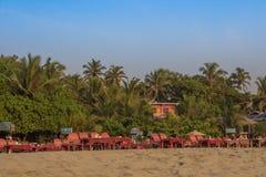 Αργόσχολοι ήλιων στην παραλία Arambol, ο Βορράς Goa, Ινδία Στοκ φωτογραφία με δικαίωμα ελεύθερης χρήσης