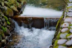 Αργό μίγμα παραθυρόφυλλων του μικρού ποταμού στο άγριο δάσος, στην Κίνα Στοκ εικόνα με δικαίωμα ελεύθερης χρήσης