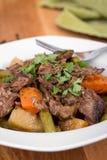 Αργό stew ψητού δοχείων βόειου κρέατος στοκ φωτογραφία