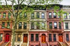 Αρενησθες δε θολορ οσθuρο Harlem - πόλη της Νέας Υόρκης Στοκ εικόνα με δικαίωμα ελεύθερης χρήσης