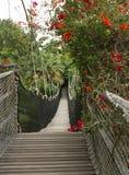 Αρθρωμένη γέφυρα στοκ εικόνα με δικαίωμα ελεύθερης χρήσης