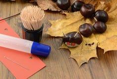 Αριθμοί κάστανων φιλοσόφων στο χρόνο φθινοπώρου με τα ραβδιά thooth Στοκ εικόνα με δικαίωμα ελεύθερης χρήσης
